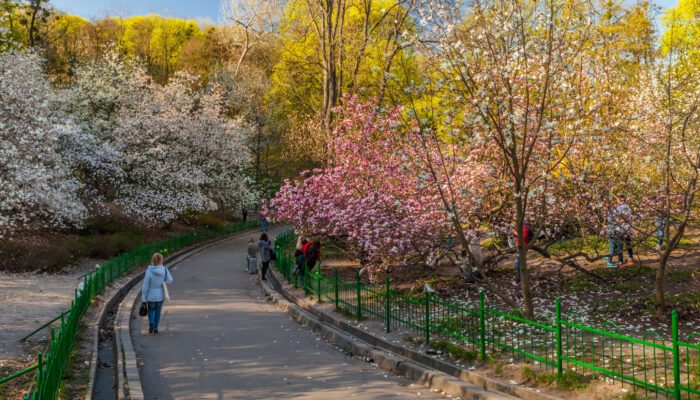 Ботанический сад в Киеве