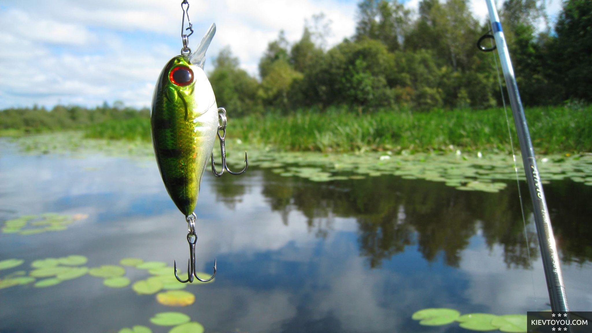 Лучшие места для рыбалки в Киеве